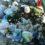 Cosenza e provincia. Emergenza rifiuti, si rischia si sprofondare nella monnezza